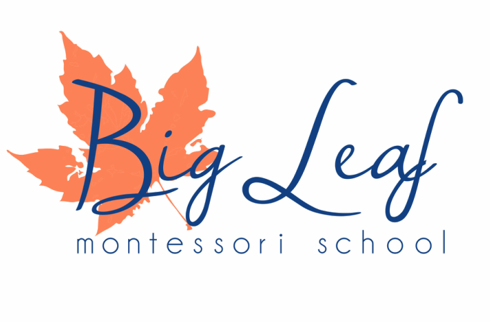 Big Leaf Montessori School